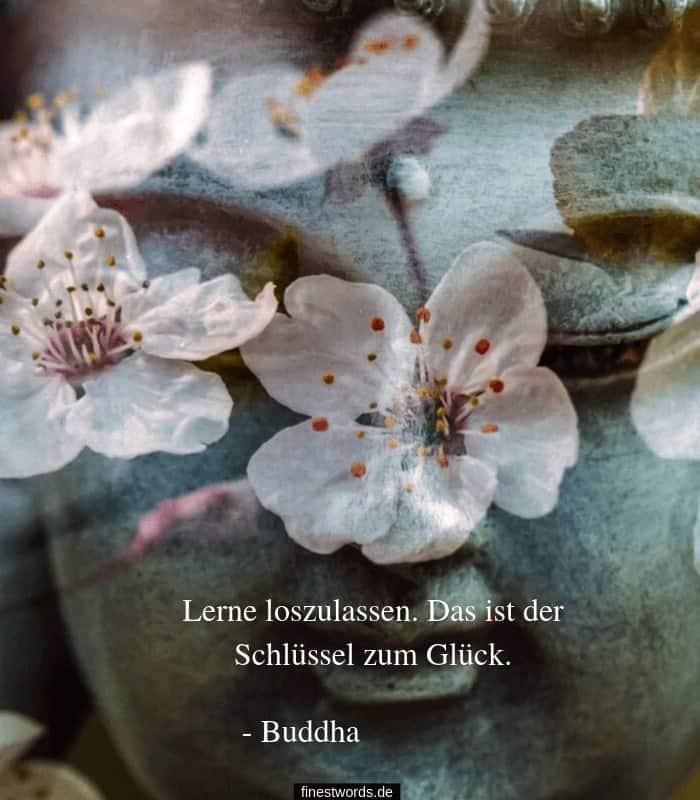 Buddha Zitat