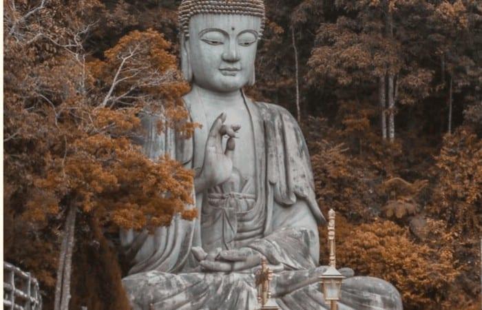 Budhha Zitate