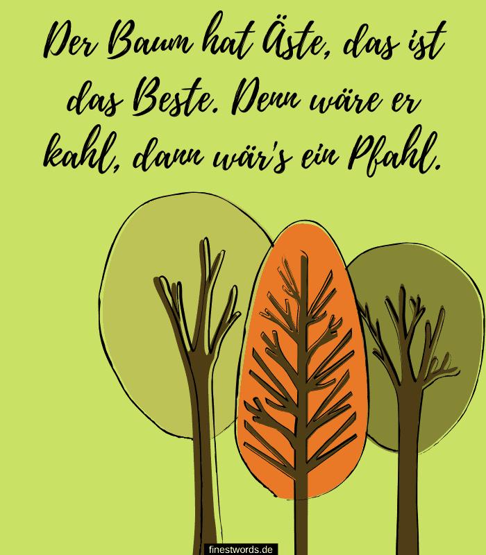 Der Baum hat Äste, das ist das Beste. Denn wäre er kahl, dann wär's ein Pfahl.