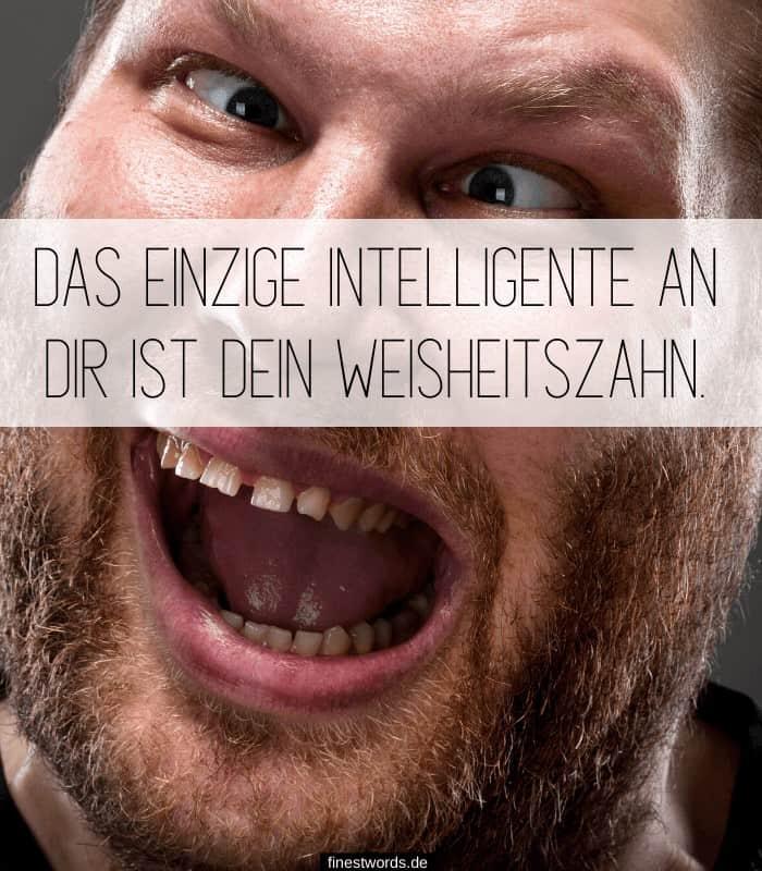 Das einzige intelligente an Dir ist Dein Weisheitszahn.