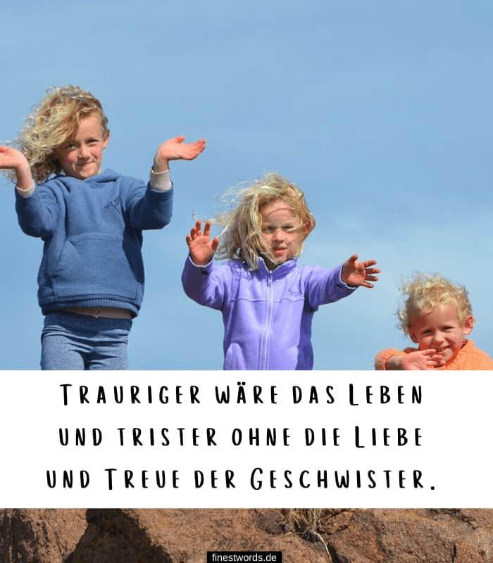 Trauriger wäre das Leben und trister ohne die Liebe und Treue der Geschwister.