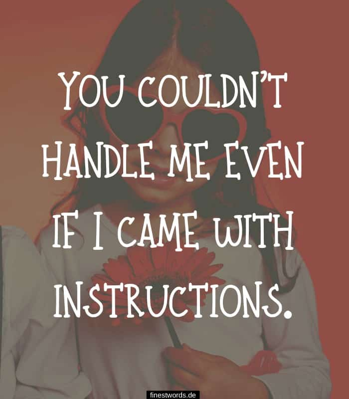 You couldn't handle me even if I came with instructions.