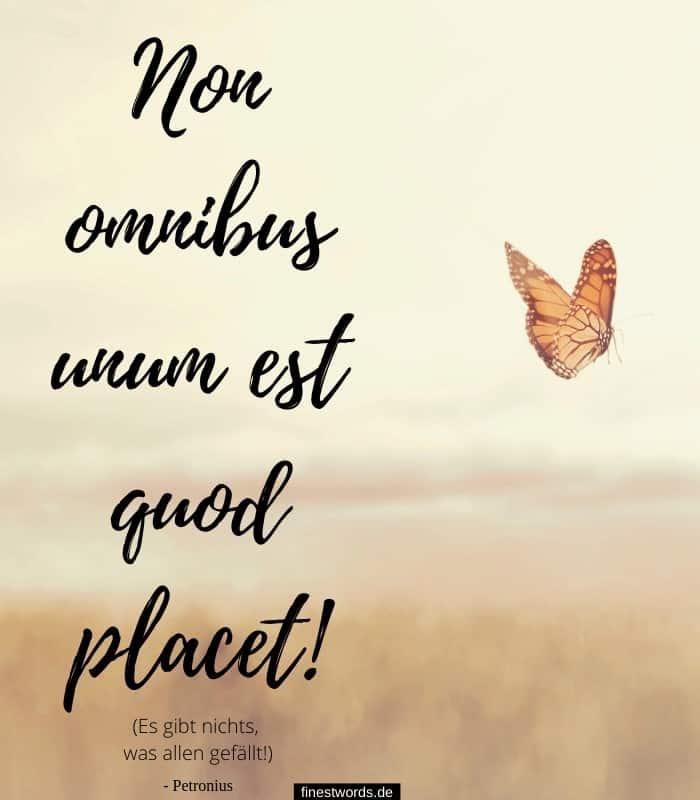 Non omnibus unum est quod placet! - Es gibt nichts, was allen gefällt! - Petronius