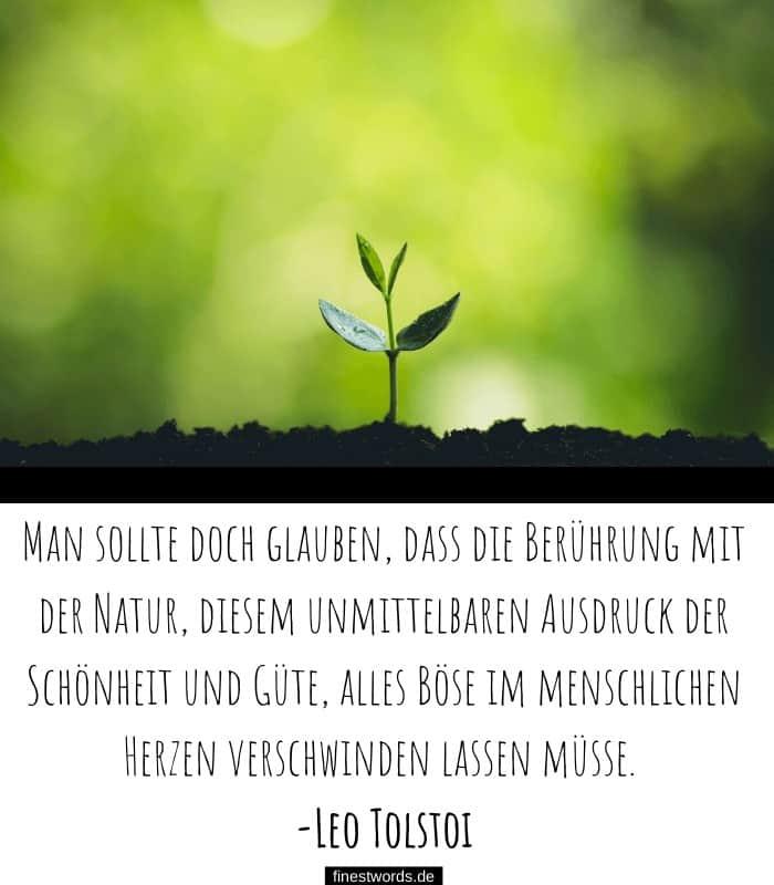 Man sollte doch glauben, dass die Berührung mit der Natur, diesem unmittelbaren Ausdruck der Schönheit und Güte, alles Böse im menschlichen Herzen verschwinden lassen müsse. -Leo Tolstoi