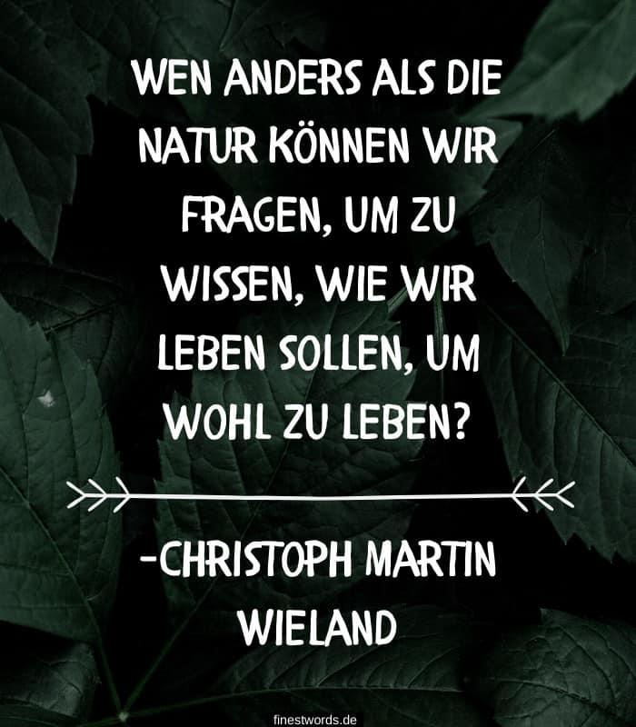 Wen anders als die Natur können wir fragen, um zu wissen, wie wir leben sollen, um wohl zu leben? -Christoph Martin Wieland