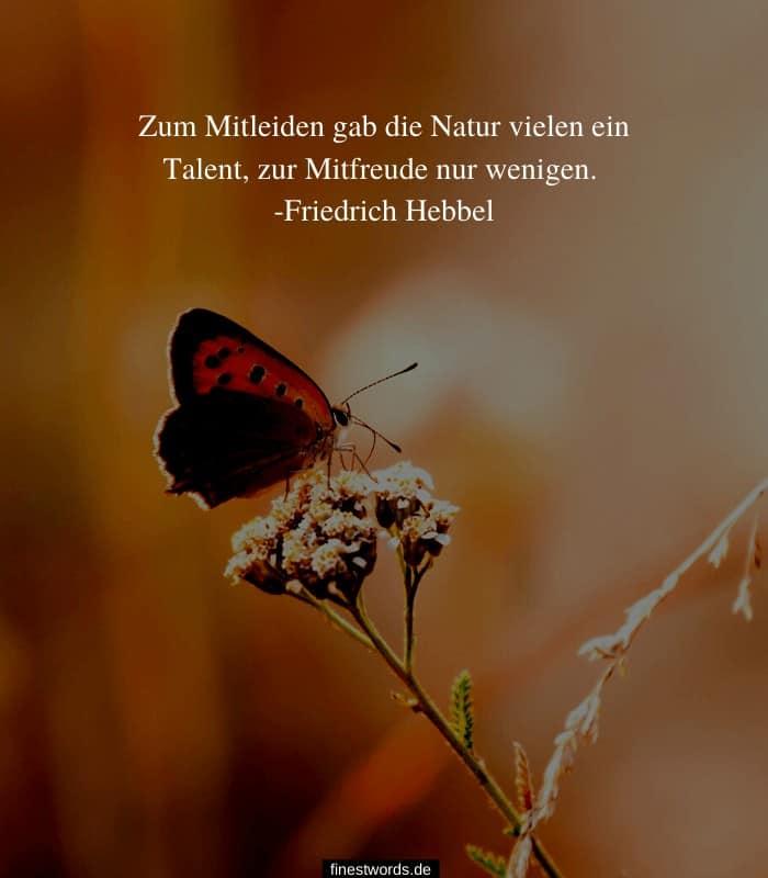 Zum Mitleiden gab die Natur vielen ein Talent, zur Mitfreude nur wenigen. -Friedrich Hebbel