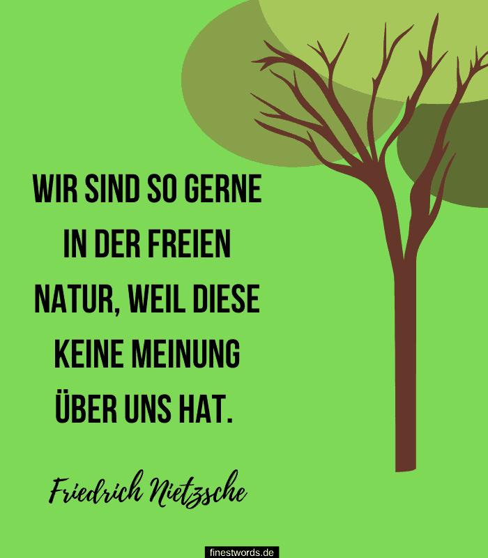 Wir sind so gerne in der freien Natur, weil diese keine Meinung über uns hat. -Friedrich Nietzsche