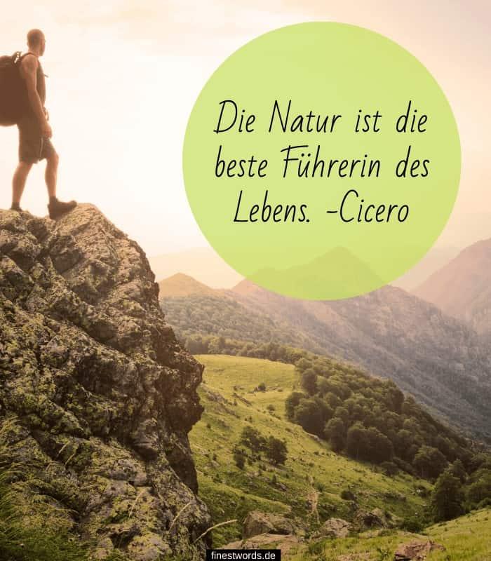 Die Natur ist die beste Führerin des Lebens. -Cicero