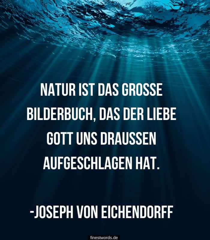 Natur ist das große Bilderbuch, das der liebe Gott uns draußen aufgeschlagen hat. -Joseph von Eichendorff