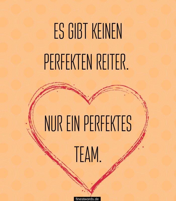Es gibt keinen perfekten Reiter. Nur ein perfektes Team.