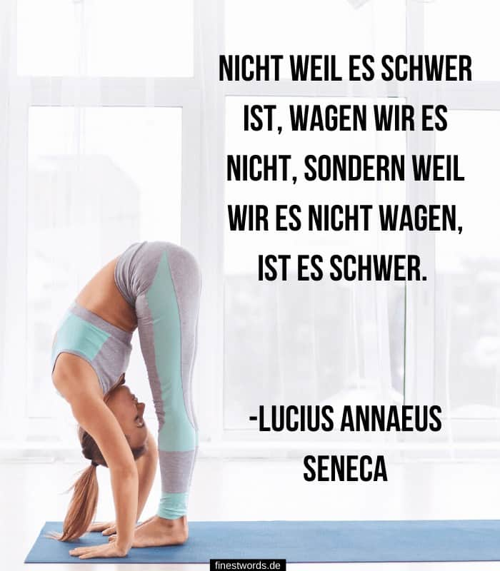 Nicht weil es schwer ist, wagen wir es nicht, sondern weil wir es nicht wagen, ist es schwer. -Lucius Annaeus Seneca