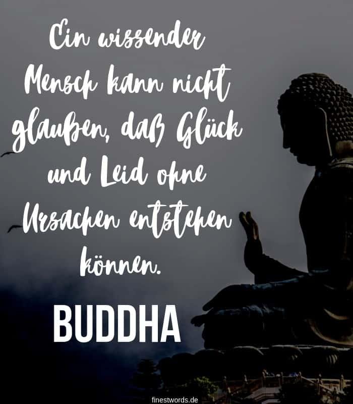 Ein wissender Mensch kann nicht glauben, daß Glück und Leid ohne Ursachen entstehen können. -Buddha
