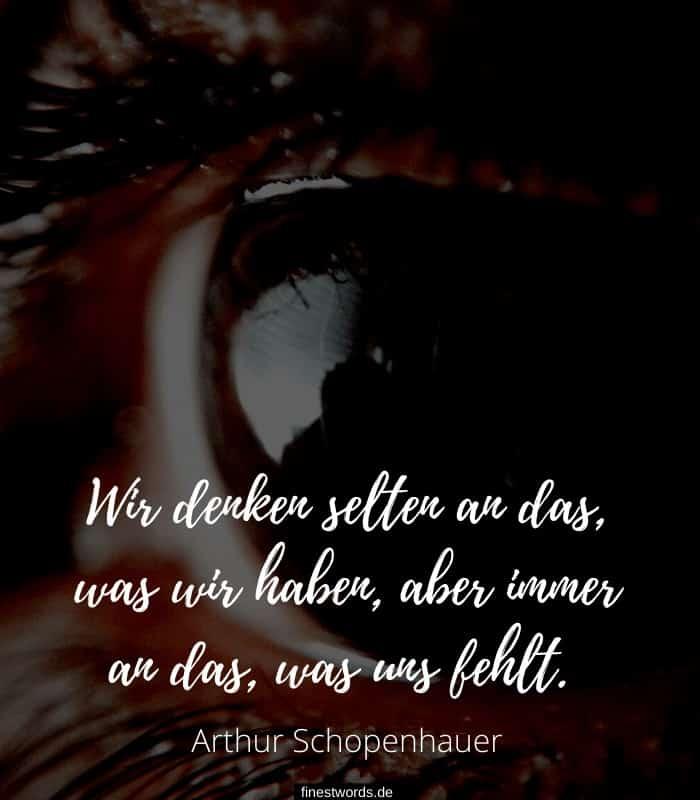Wir denken selten an das, was wir haben, aber immer an das, was uns fehlt. -Arthur Schopenhauer