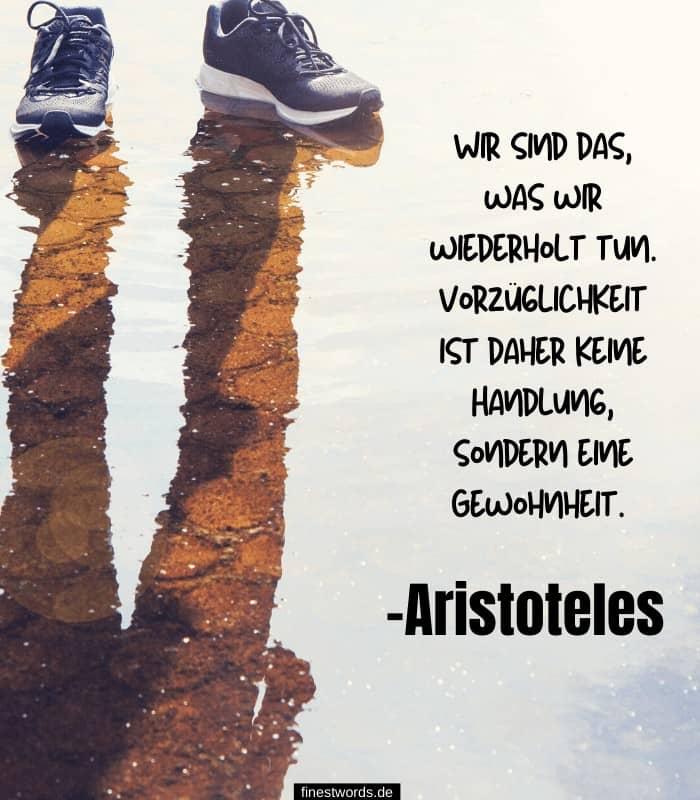 Wir sind das, was wir wiederholt tun. Vorzüglichkeit ist daher keine Handlung, sondern eine Gewohnheit. -Aristoteles