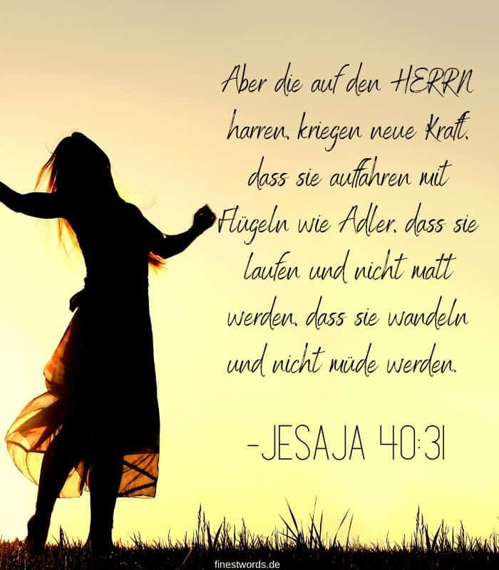Aber die auf den HERRN harren, kriegen neue Kraft, dass sie auffahren mit Flügeln wie Adler, dass sie laufen und nicht matt werden, dass sie wandeln und nicht müde werden. -Jesaja 40:31