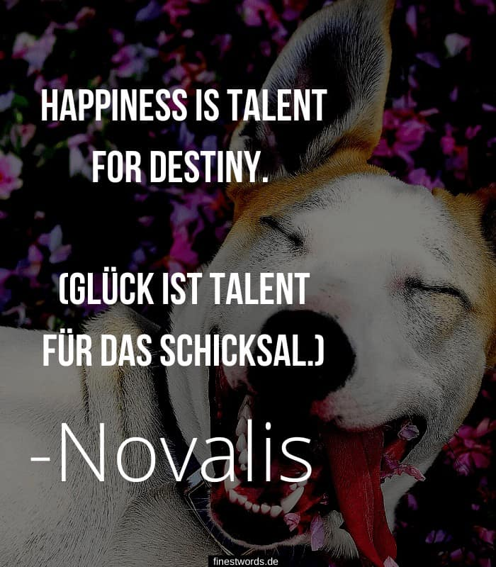 Happiness is talent for destiny. (Glück ist Talent für das Schicksal.) -Novalis