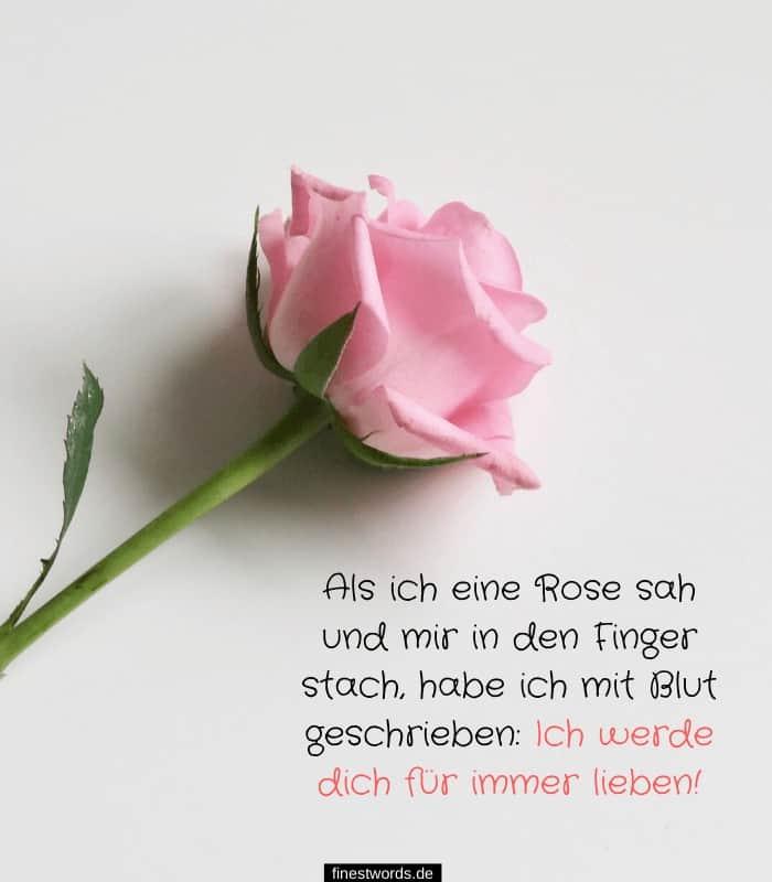 Als ich eine Rose sah und mir in den Finger stach, habe ich mit Blut geschrieben: Ich werde dich für immer lieben!