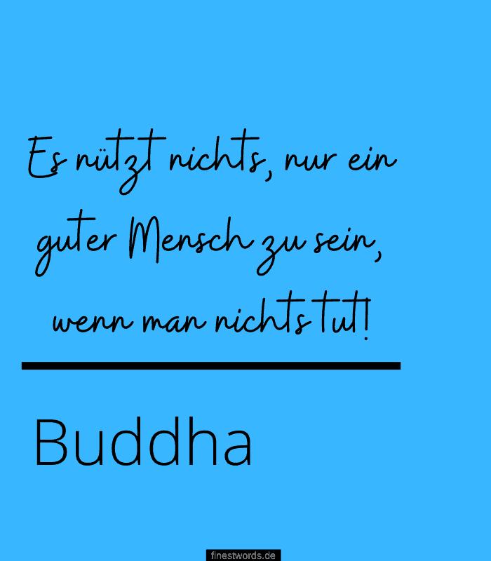 Es nützt nichts, nur ein guter Mensch zu sein, wenn man nichts tut! -Buddha
