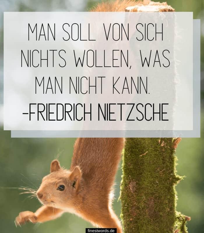 Man soll von sich nichts wollen, was man nicht kann. -Friedrich Nietzsche