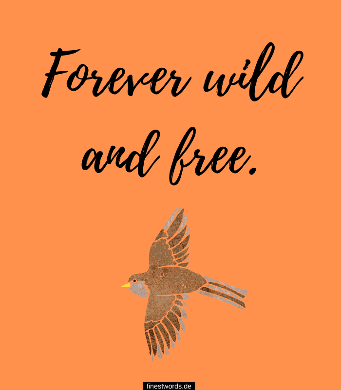 Forever wild and free.