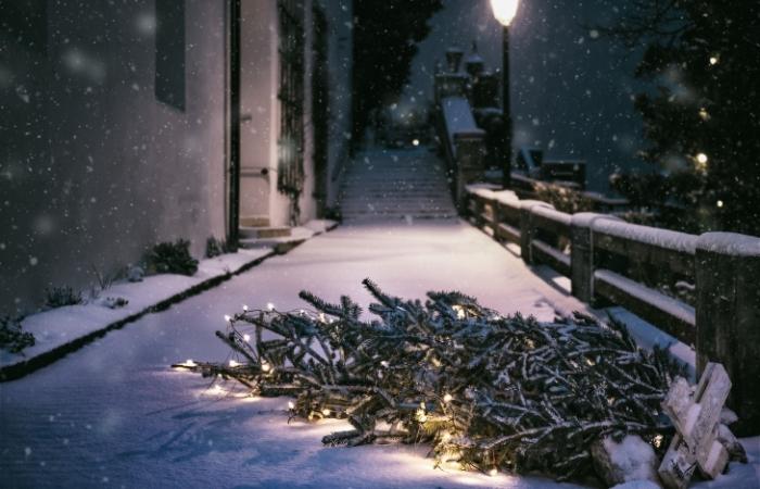 Besinnliche Weihnachtsgedichte