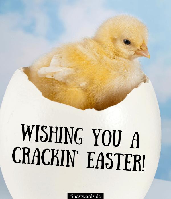 Lustige Ostergrüße: Bild zum Verschicken