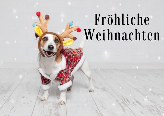 Weihnachtskarten für Hundefreunde